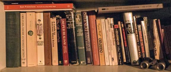 Lenore Chinn's Bookshelf (photograph  © Lenore Chinn)