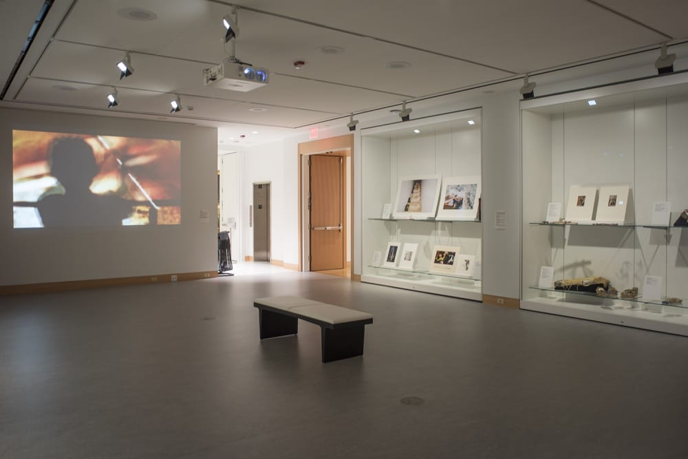 "Each work in the exhibition was projected onto a large white gallery wall. Takemoto's video, ""On the Line,"" is being projected onto the back wall on the left. On the far right of the frame, there are two large built-in glass cases where each artist was able to choose materials from the Spencer's permanent collection. The objects chosen complement the works projected. The image shows a wide view of the space that has a bench in the middle of the room where onlookers can sit."