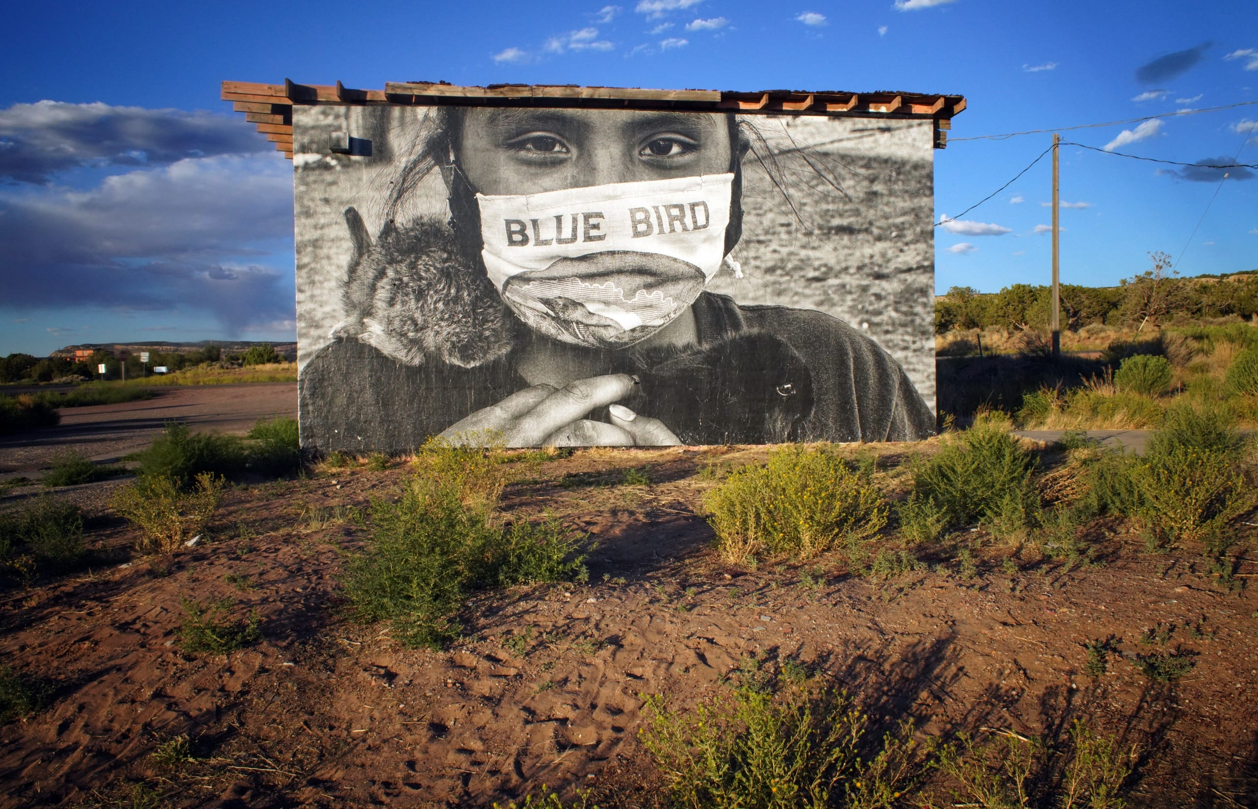 Color photograph shows a lush desert landscape with a bright blue sky. In the center of the image is a building wrapped in a photographic mural of a young girl, wearing a face mask and looking straight out at the veiwer, holding a small bunny