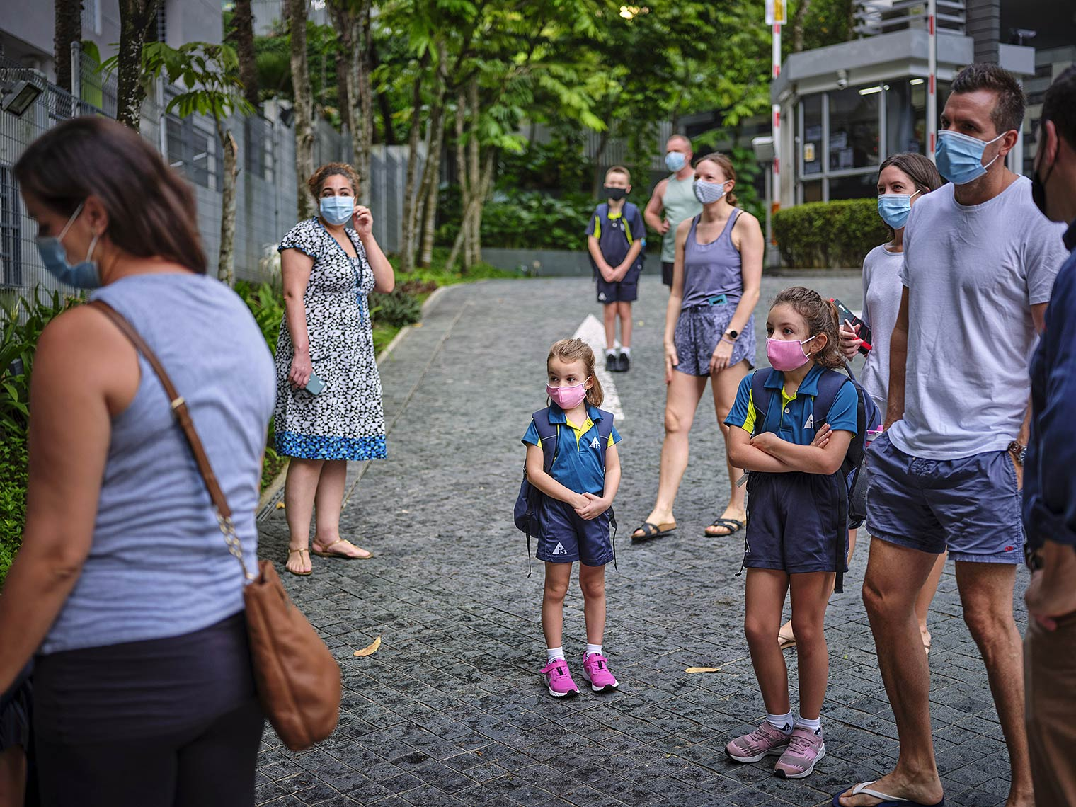 Masked white families standing near each other by a palm-tree lined residential street